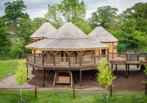 Leader Programme Treehouse Image