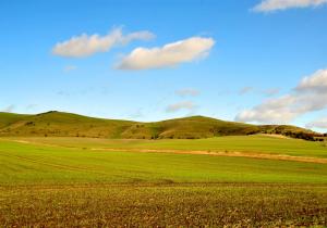 Vale of Pewsey Image